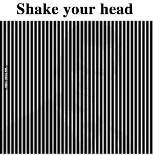shake_head.jpg